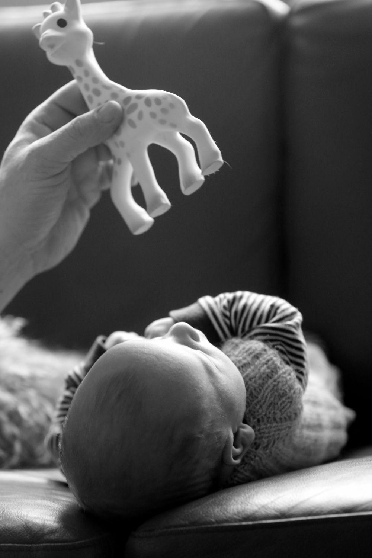 baby-fotografering-36